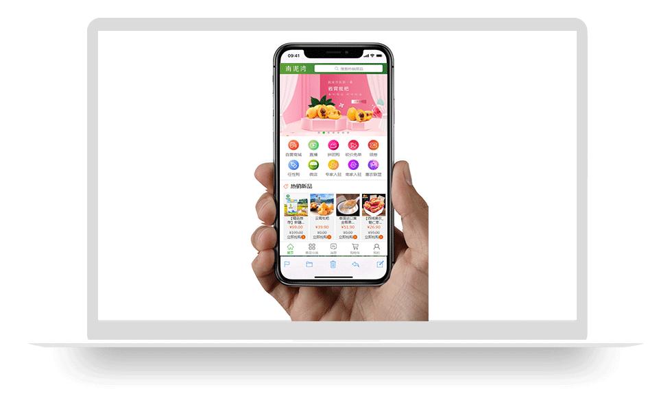 做一个电子商城app多少钱